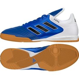Adidas Copa 17.3 In M BB0853 Zapatillas de interior azul