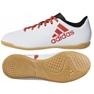 Zapatos de interior adidas X Tango 17.4 IN Jr CP9053 blanco