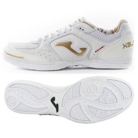 Zapatos de interior Joma Top Flex 902 en M TOPS.902.IN
