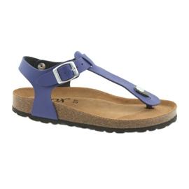BIOX azul flip-flops