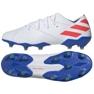 Botas de fútbol adidas Nemeziz Messi 19.1 Fg M F34402