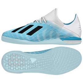 Zapatillas de interior adidas X 19.1 In M G25754