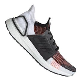Multicolor Zapatillas de running adidas UltraBoost 19 m M G27519