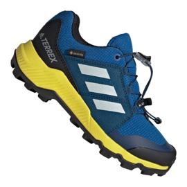 Azul Zapatillas Adidas Terrex Gtx Jr BC0599