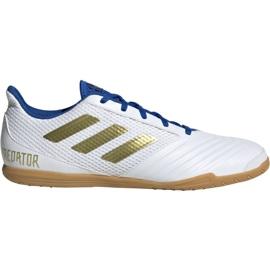 Zapatillas de fútbol Adidas Predator Sala 19.4 In M EG2827