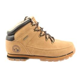 American Club Zapatos con cordones camel ES40