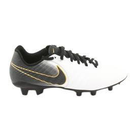 Zapatillas de fútbol Nike Tiempo Legend 7 Academy Fg M AO2596-100