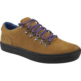 Timberland Adv 2.0 Cupsole Alpine Ox M A1SHV calzado marrón