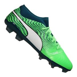 Botas de fútbol Puma One 18.2 Fg M 104533-04 verde verde