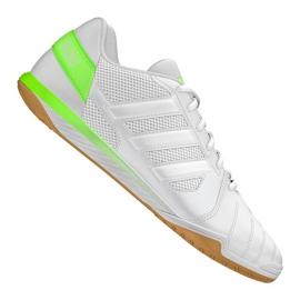 Zapatillas de fútbol Adidas Top Sala Ic M FV2558 blanco verde blanco