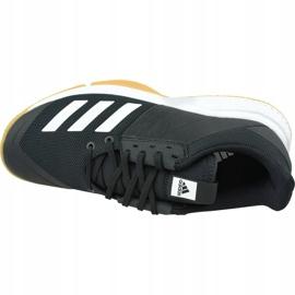 Zapatillas de voleibol Adidas Crazyflight Team M D97701 negro negro 2