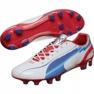 Zapatillas de fútbol Puma Evo Speed 1 Fg M 102527 01 blanco blanco 1